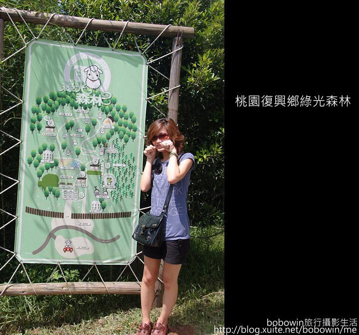 2009.08.15 綠光森林:DSCF6580.JPG