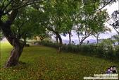 老官道休閒農場露營區:DSC_1160.JPG