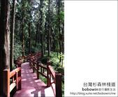2011.05.14台灣杉森林棧道 文史館 天主堂:DSC_8308.JPG