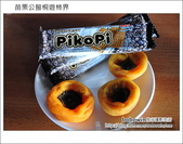 苗栗公館桐遊柿界景觀咖啡:DSC_0191.JPG