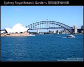 [ 澳洲 ] 雪梨皇家植物園 Sydney Royal Botanic Gardens:DSCF5134.JPG