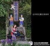 [ 台中 ] 新社薰衣草森林--薰衣草節:DSCF6425.JPG