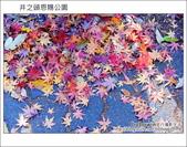 日本東京之旅 Day3 part1 井之頭恩賜公園:DSC_9656.JPG