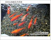 [ 日本北海道之旅 ] Day1 Part1 桃園機場出發--> 北海道千歲機場 --> 印第安水車:DSC_7487.JPG
