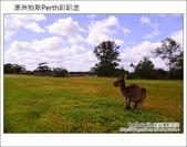 HEIRISSON ISLAND 澳洲伯斯袋鼠島:DSC_0207.JPG