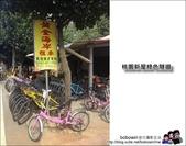 桃園新屋綠色隧道騎單車:照片 3 (2).JPG