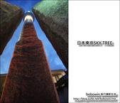 日本東京SKYTREE:DSC06944.JPG