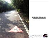 桃園新屋綠色隧道騎單車:照片 4.JPG