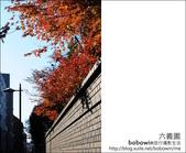 日本東京之旅 Day4 part6 六義園:DSC_0759.JPG