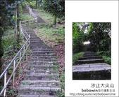 2012.05.06 汐止大尖山:DSC_2522.JPG