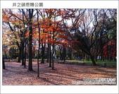 日本東京之旅 Day3 part1 井之頭恩賜公園:DSC_9658.JPG