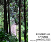 2011.05.14 奮起湖杉林步道~祖母級火車頭車庫 木馬道 翠竹坡 奮起湖神木:DSC_8057.JPG