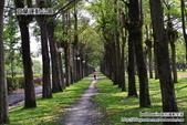 2014.08.09 宜蘭運動公園:DSC_4709.JPG