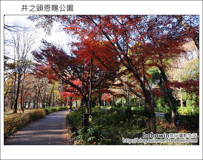 日本東京之旅 Day3 part1 井之頭恩賜公園:DSC_9668.JPG