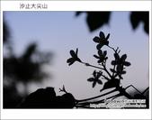 2012.05.06 汐止大尖山:DSC_2527.JPG