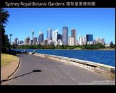 [ 澳洲 ] 雪梨皇家植物園 Sydney Royal Botanic Gardens:DSCF5139.JPG