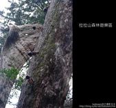 [ 北橫 ] 桃園復興鄉拉拉山森林遊樂區:DSCF7894.JPG