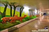 台南散步路線,古蹟、文創、彩繪新生命:DSC_0962.JPG