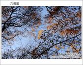日本東京之旅 Day4 part6 六義園:DSC_0804.JPG