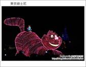 Day2 part2 晚上迪士尼遊行:DSC_9219.JPG