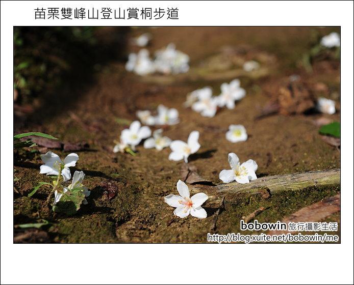 2012.04.29 苗栗雙峰山登山步道:DSC_1932.JPG