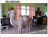 蘭小熊書房彩虹屋:DSC_3622.JPG