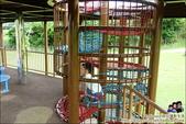 中城公園:DSC02868.JPG