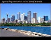 [ 澳洲 ] 雪梨皇家植物園 Sydney Royal Botanic Gardens:DSCF5140.JPG