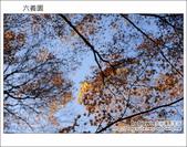 日本東京之旅 Day4 part6 六義園:DSC_0805.JPG