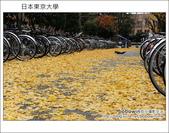 [ 日本東京自由行 ] Day4 part3 東京大學:DSC_0523.JPG