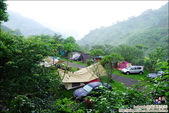 新竹尖石油羅溪森林:DSC08089.JPG