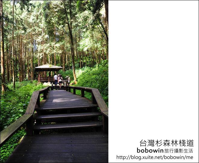 2011.05.14台灣杉森林棧道 文史館 天主堂:DSC_8315.JPG