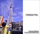 日本東京SKYTREE:DSC_4665.JPG