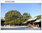 日本東京之旅 Day3 part5 東京原宿明治神宮:DSC_0046.JPG