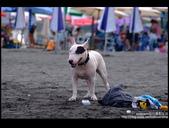 [ 遊記 ] 宜蘭烏石港衝浪 :DSCF6062.JPG