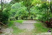 新竹尖石油羅溪森林:DSC07726.JPG
