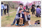 苗栗銅鑼環保公園 鞭炮花 賞櫻:DSC_3879.JPG