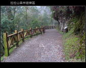 [ 北橫 ] 桃園復興鄉拉拉山森林遊樂區:DSCF7748.JPG