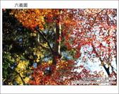 日本東京之旅 Day4 part6 六義園:DSC_0806.JPG