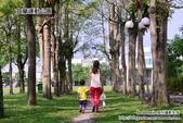 2014.08.09 宜蘭運動公園:DSC_4733.JPG