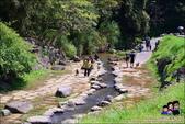 台北內湖大溝溪公園:DSC_2272.JPG