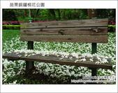 2012.04.29 苗栗桐花公園花況:DSC_1738.JPG