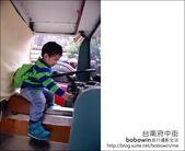 2013.01.25 台南府中街:DSC_9334.JPG