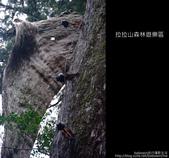 [ 北橫 ] 桃園復興鄉拉拉山森林遊樂區:DSCF7896.JPG