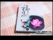 嵌合筷:DSC_3572.JPG