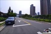 桃園青塘園生態公園:DSC_2484.JPG