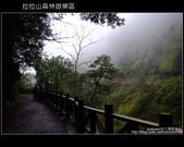 [ 北橫 ] 桃園復興鄉拉拉山森林遊樂區:DSCF7757.JPG