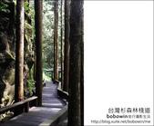 2011.05.14台灣杉森林棧道 文史館 天主堂:DSC_8322.JPG