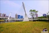 桃園青塘園生態公園:DSC_2538.JPG
