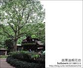 2012.04.29 苗栗油桐花坊:DSC_2169.JPG